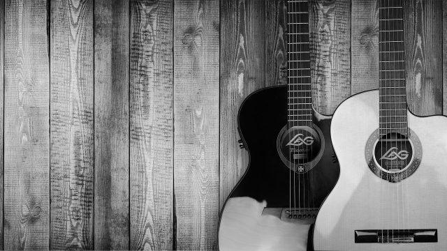 Stort urval av gitarrer