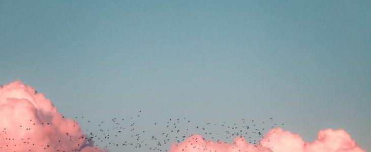 Låt ditt testamente inspirera andra till att flyga högt över molnen!
